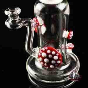 Snic Clear Mushroom Rig